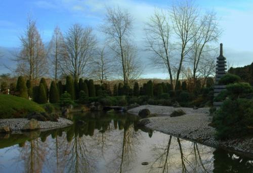 Jardin Japones en Bonn