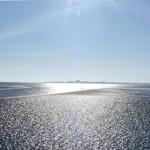 Barro y pantanos salados en Cuxhaven