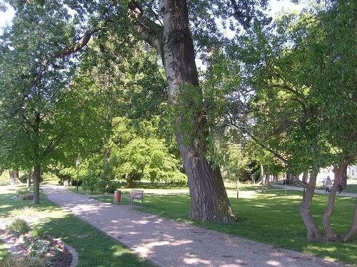 Parque Muritz