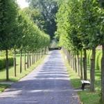 Jardín Botánico estatal de Kassel