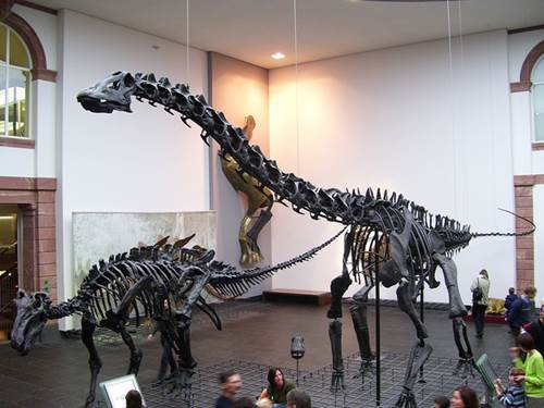 Un Musee a Francfort - 044