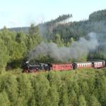 Tren Harz, por los bosques de Turingia