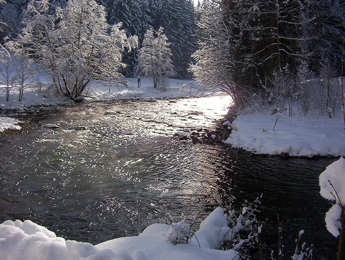 Paisajes invernales en Allgau