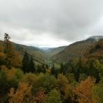 Recuerdos y mitos en el Bosque Negro