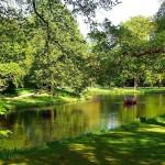 Animales de granja y ríos en el Bürgerpark de Bremen