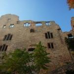 Altes y Neues Schloss, castillos en Baden-Baden