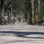 Erfurt y sus alrededores en bicicleta