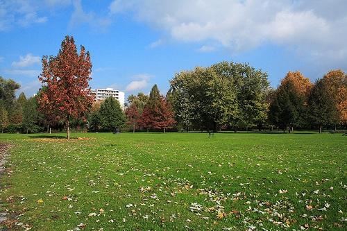 Herzogenriedpark en Mannheim