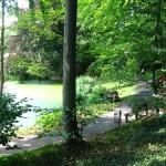 Caminata por el Jardín Botánico de Giessen
