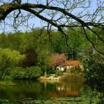 El Botanischer Garten Munster o jardin botanico
