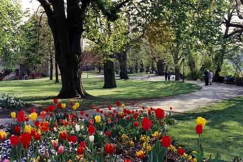Jardin del Castillo en Rothenburg