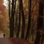 Relajación y aire libre en Baden Baden