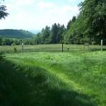 Rennsteig, mítico camino en el centro de Alemania