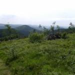 Invierno, cultura y naturaleza en Winterberg